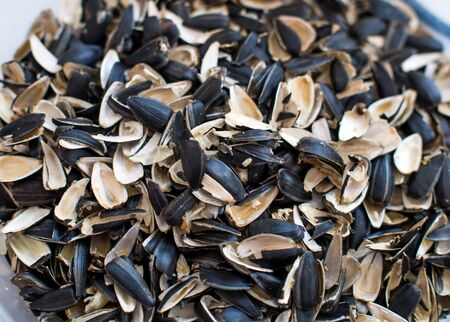 Husk from sunflower seeds piled a handful Imagens
