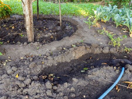 Ditches to facilitate watering plants in the garden