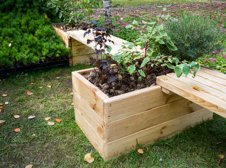 High decorative flower bed combined with wooden benches