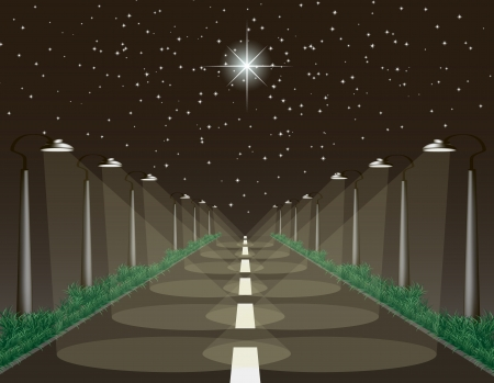 polaris: The Highway under the starry sky, lanterns illuminate the empty road with grass on roadsides,