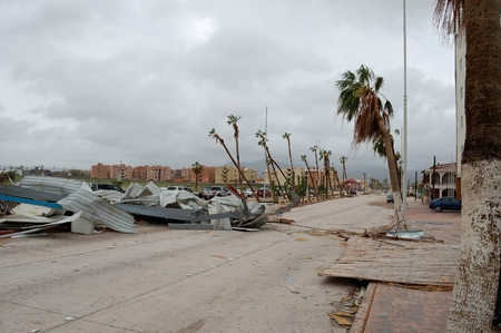 decimated: Road with a lot of damaged palms around after hurricane Odile in Centro Cabo San Lucas Editorial