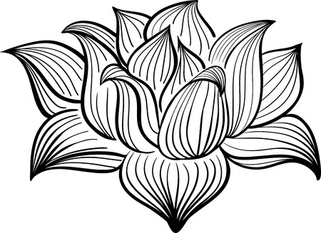 Vector Black and White Lotus flower drawn in sketch style. Line art Ilustração