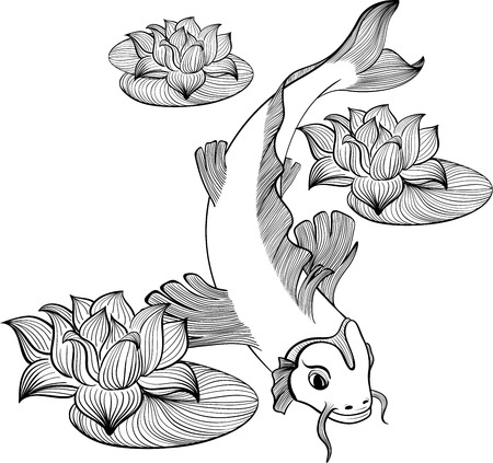 Koi fish with three flowers of lotus created in Line Art Vector