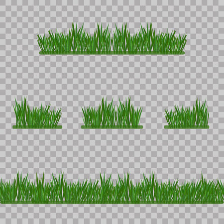Set Green Grass Borders, Vector Illustration. Abstract field texture. Symbol of summer, plant, eco and natural, growth or fresh. Design for card, banner. Meadow template for print products.