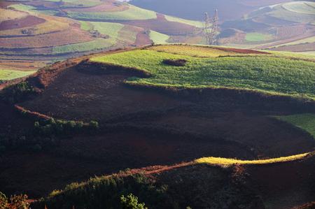 yunnan: Dongchuan Yunnan red clay field