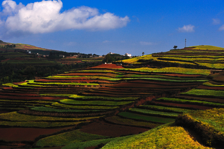 yunnan: Dongchuan Yunnan red clay