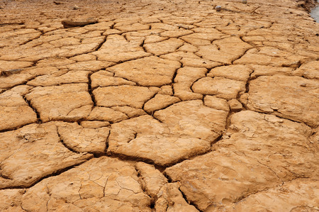 loess: Dry land