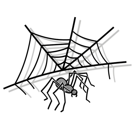 Illustration of a spider web and spider