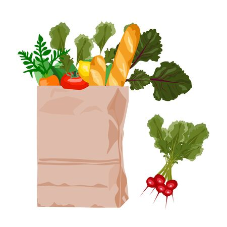 Paper bag with fresh products such as fruits, vegetables, baguette, bread. Vector. Grocery shop products concept.