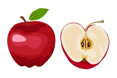A whole red apple, half an apple slice. Vector illustration on a white background. Design for menu design in a restaurant and cafe, recipe, card, fabric, clothing print.