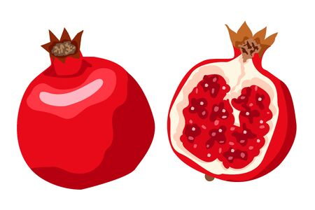 Whole and cut pomegranate icon set. Flat cartoon vector illustration. Good print for menu, poster, card, fabric or wallpaper.