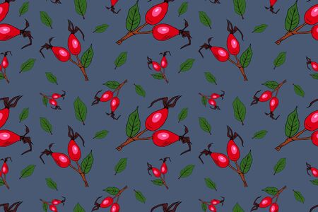Vector seamless pattern with rose hip on blue background. Berry pattern consisting of beautiful seamless repeat rose hip. Natural design for fabric, wallpaper, textile, packaging, web design.
