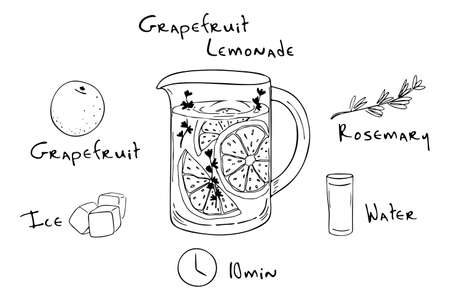 Recipe lemonade detox cocktail with rosemary, grapefruit. Vector illustration for greeting cards, magazine, cafe and restaurant menu. Fresh lemonade for healthy life, diets.