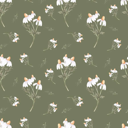 Watercolor seamless pattern with white chamomiles flowers. Floral botanical print. Beautiful design for printing on fabric, clothing, bedding, postcard, poster. 版權商用圖片