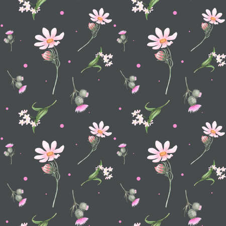 Seamless watercolor pattern with the image of pink daisies, forget-me-nots, thistles on a dark gray background. Watercolor hand drawn illustrations. Design for textile, fabric, clothing, cards, packaging. 版權商用圖片