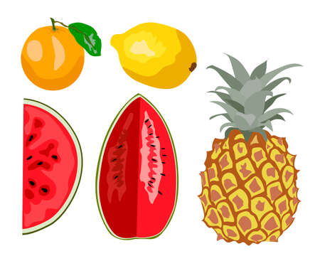 Fresh fruits vector collection. Set of sweet fruits watermelon, pineapple, orange, lemon for health. Design for greeting card, recipe, menu, textile