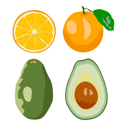 Fresh fruits vector collection. Set of sweet fruits orange, avocado for health. 向量圖像