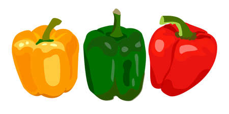 Vector set with vegetables: peppers isolated on white. Vegetable set, organic ingredients. Can be used for menu labels, dishes, card.
