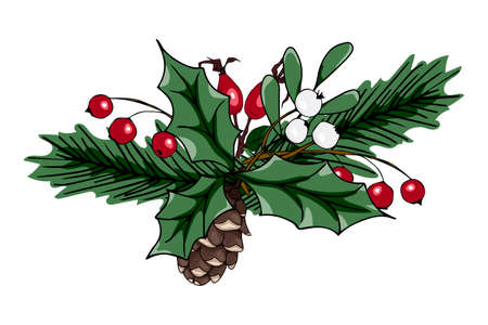 Christmas vector illustration. Composition with red and white berries, fir cones, fir branches. Beautiful design for printing greeting card, invitation, poster, tag, label, gift decoration.
