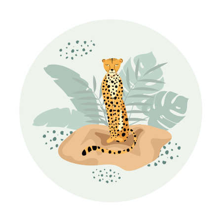 Template design with exotic wild animals. Sitting wild cat cheetah in circle. 向量圖像