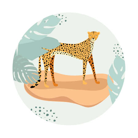 Template design with exotic wild animals. Sitting wild cat cheetah in circle. Design for banner, flyer, invitation, poster, web site or greeting card. Vector illustration.