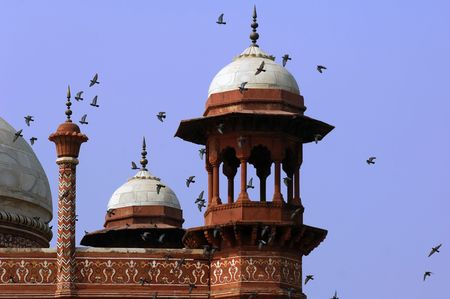 India, Agra: Taj Mahal; detail of the mosques roof; blue sky and flying  birds photo