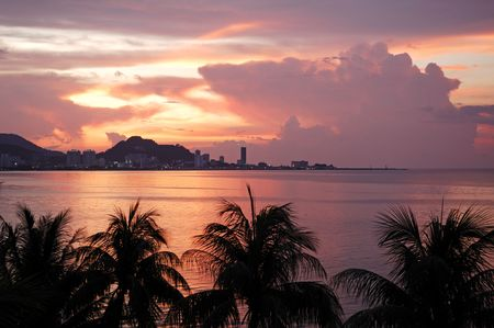 Malaysia, Penang: City view; a heavenly view with blue sky and sandy beachs outline by coconut trees and a pink sunset Stock Photo - 2824943