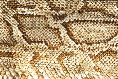 Myanmar, Mandalay: Handicraft, snake skin; a typical or traditional asian work Stock Photo