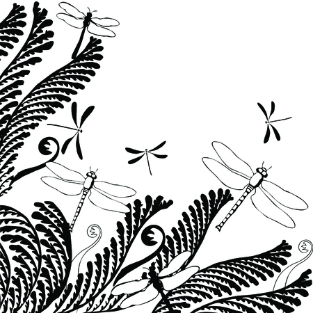 beautiful  Floral ornament with dragonflies: Vectorin white and black