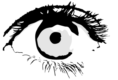 open eye: Eyes, vector; a nice and detail image of an open eye