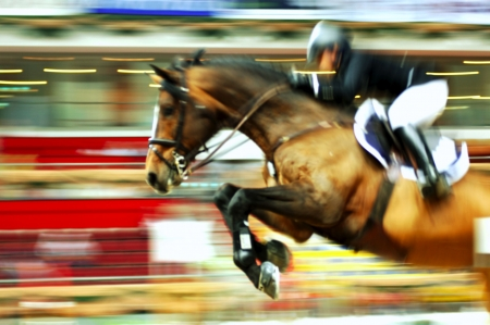View of a jumping race horse and his rider during a competition