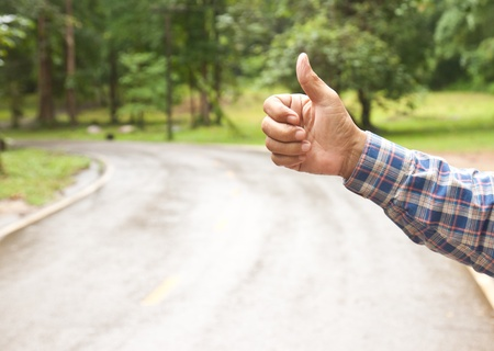 hitch hiker: A hitchhiker on the road