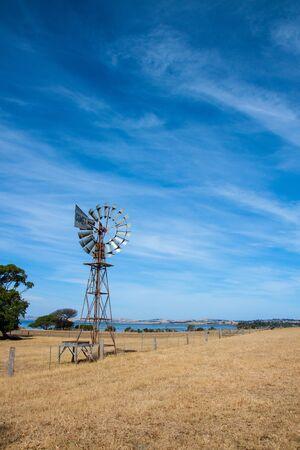 windmill in fresh green field in summer
