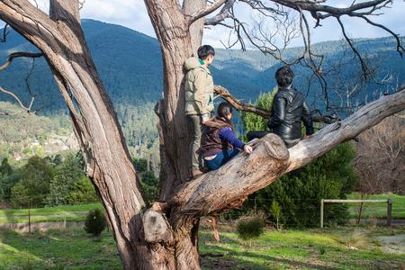 bevoelen: Een grope van vriend op boom