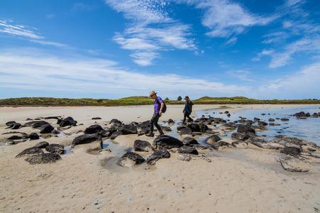 The couple on Griffiths Island along the beach