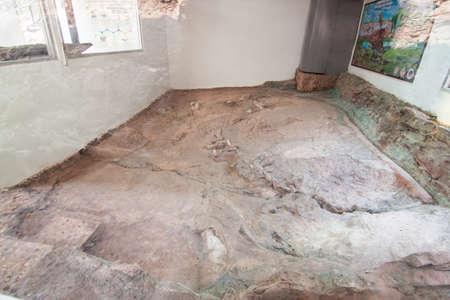 First dinosaur discovery in Phu Wiang, Khon Kaen, Thailand