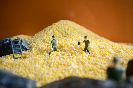 Millet with small man miniature 免版税图像