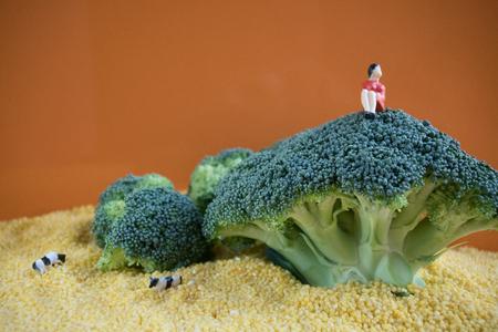 Broccoli as miniature landscape