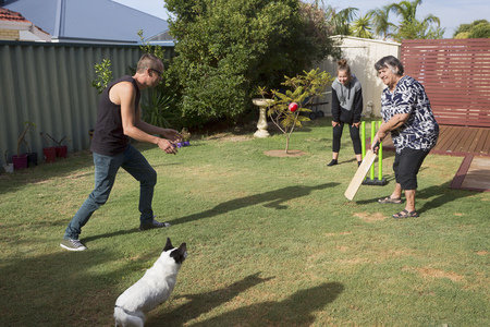 The dog joins in on the game of Back Yard Cricket. Archivio Fotografico