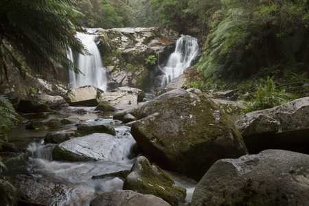 Halls Falls near St Helens on the east coast of Tasmania. 写真素材