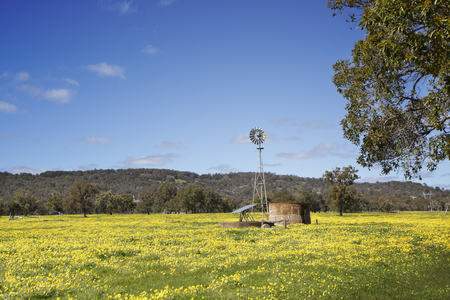 A windmill and a solar panel on a rural field in Australia.