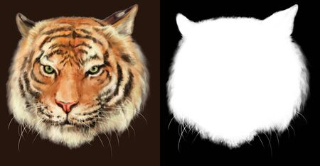 Imaginative hand drawn digital illustration of Royal Bengal Tiger head. High resolution image with alpha channel mask