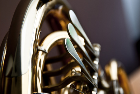french horn: French Horn
