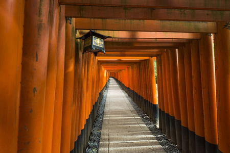 Thousands of torii gates, Fushimi Inari Shrine, Kyoto, Japan