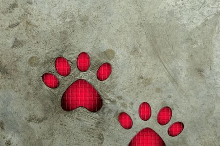 visual art: Paw print on cement floor.  Visual art.