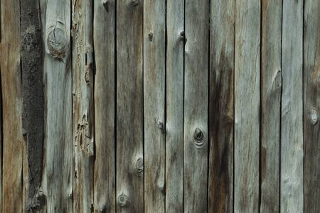 pale colour: Wood Background