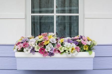 panicle: The decorative flowers by the window. Beautiful panicle