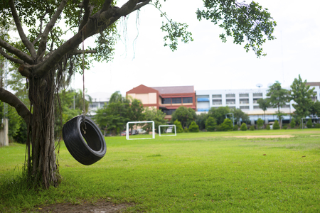 Hanging rubber tire under a tree and blurry soccer field in background.