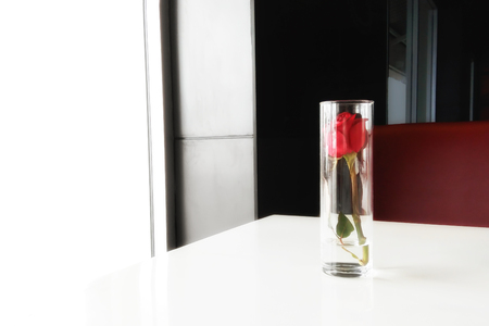 Red rose in a glass. Love concept.