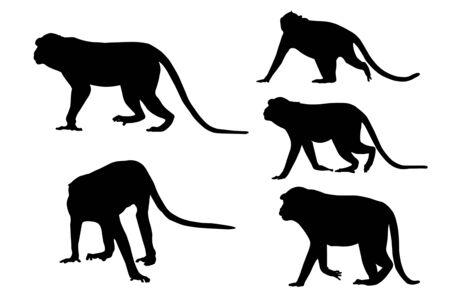 Silhouette image of monkeys on white background. Stok Fotoğraf